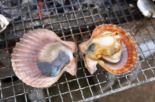 ヒオウギ貝の焼けたところ