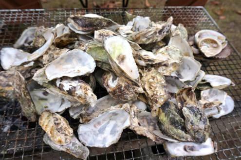 2キロの牡蠣