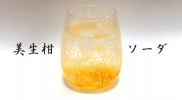mishokan_soda_big
