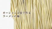 tsukemen_osyon_big