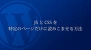 wordpress_js_css_big