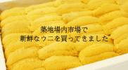 tsukiji_uni