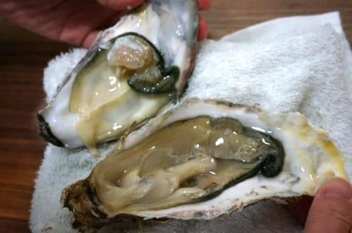 生牡蠣の開き