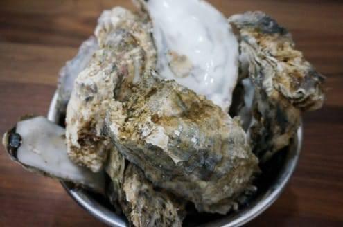 牡蠣の殻たち