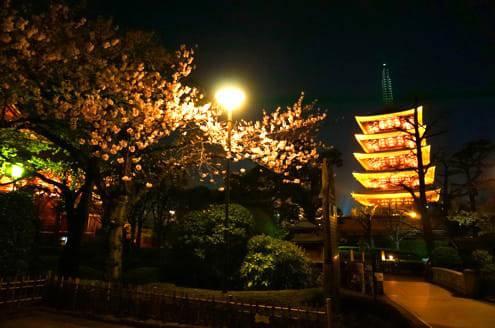 浅草寺の裏 五重塔