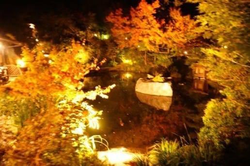 帆山亭の池の夜景