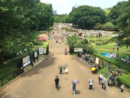 上から見た公園の様子