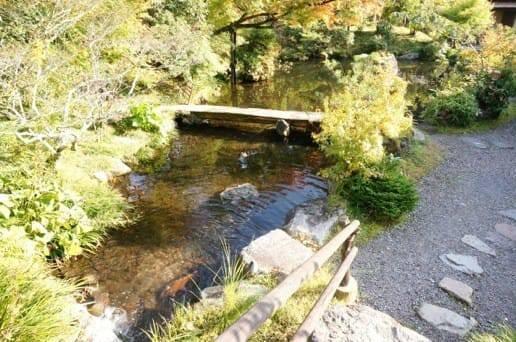 黒川温泉の帆山亭の庭園の鯉