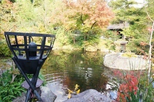 黒川温泉の帆山亭の池