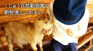 eyecatch_kuju_animalpark