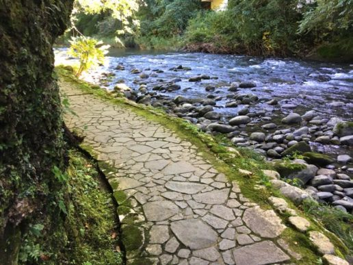 鶴仙渓の遊歩道